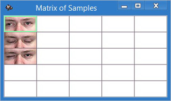 Matrix of Samples filled through automatic calibration procedure